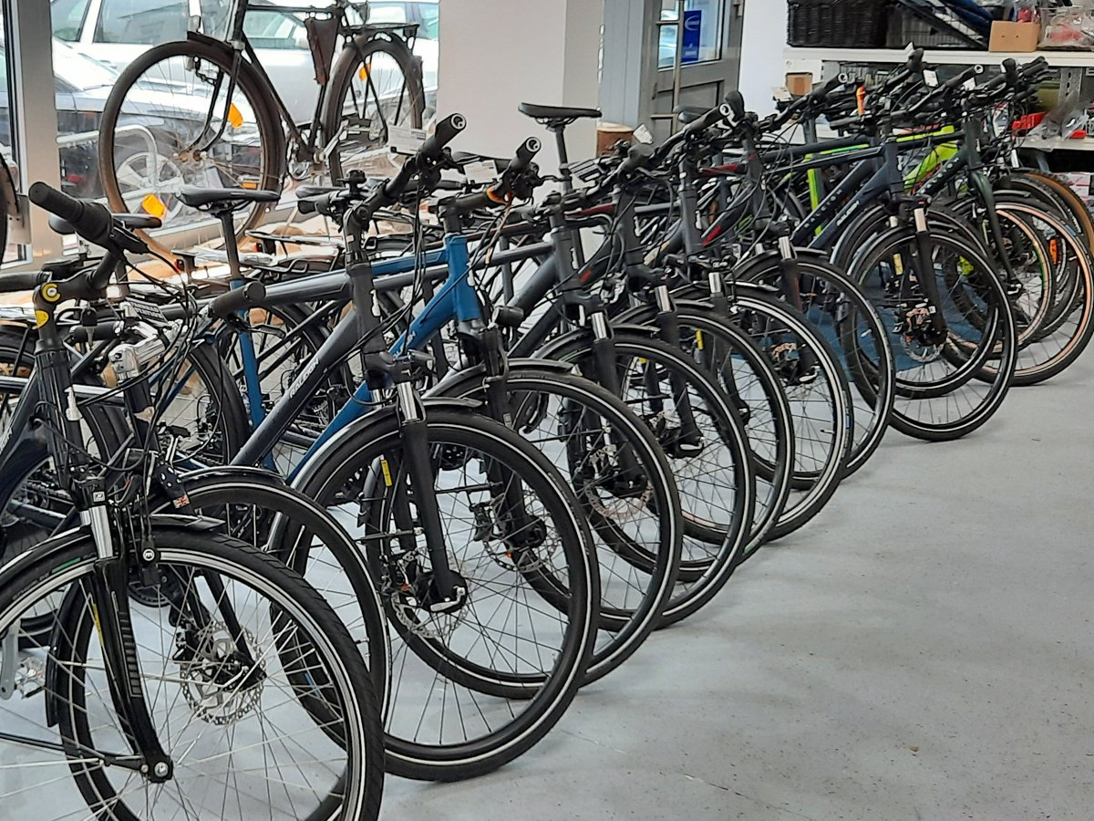 Bicycles in store
