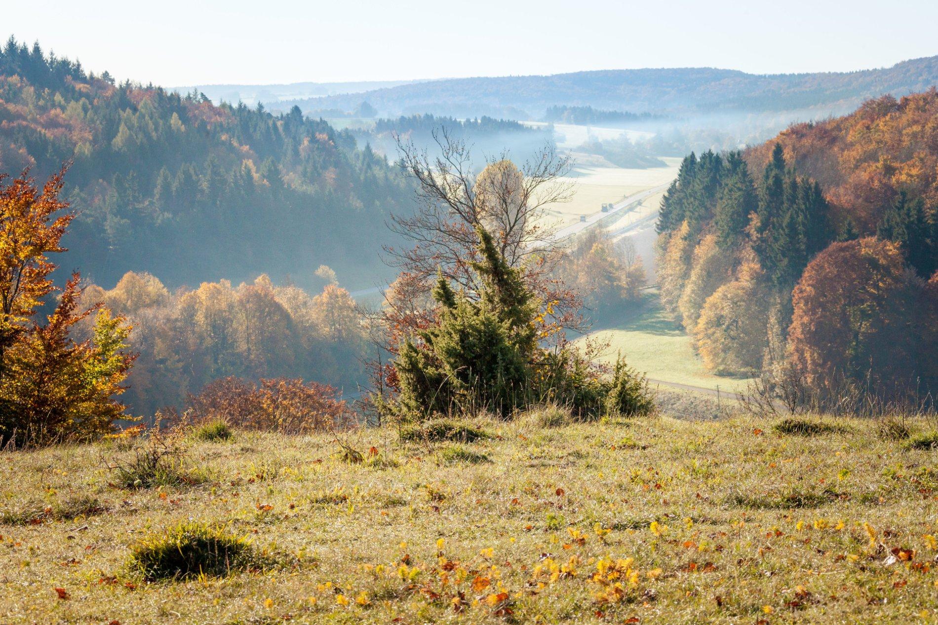 Eine Herbstlandschaft und der Ausblick von einem Hügel über ein Tal in dem leichte Nebelschwaden hängen und eine Straße ist. Links und rechts und in der Ferne ist der bunte Herbstwald. Es ist sonnig.