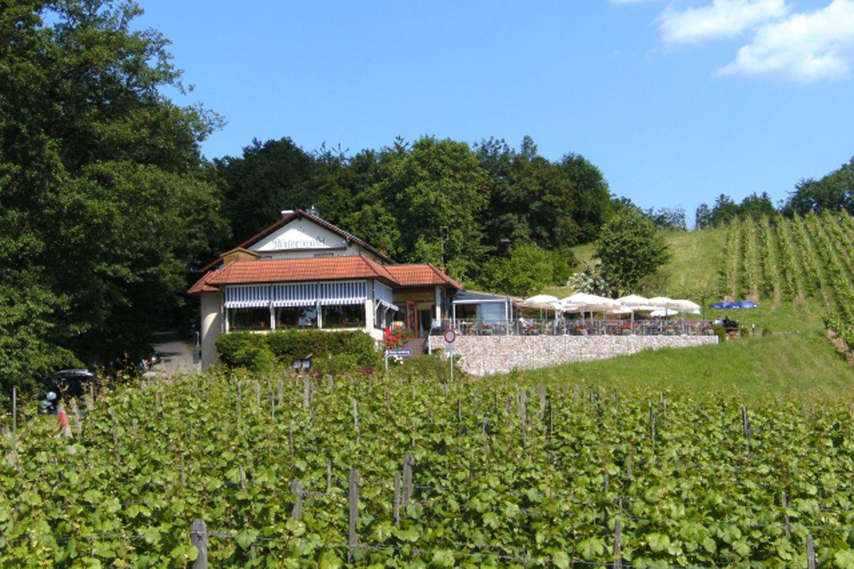 Das Restaurant-Café Röderswald inmitten grüner Reben
