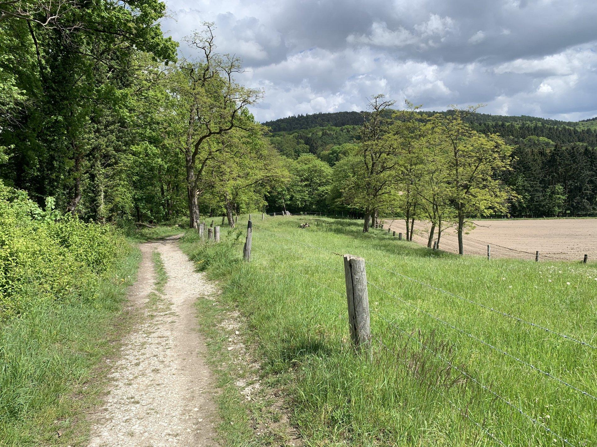 Wegeverlauf Bergweltenweg