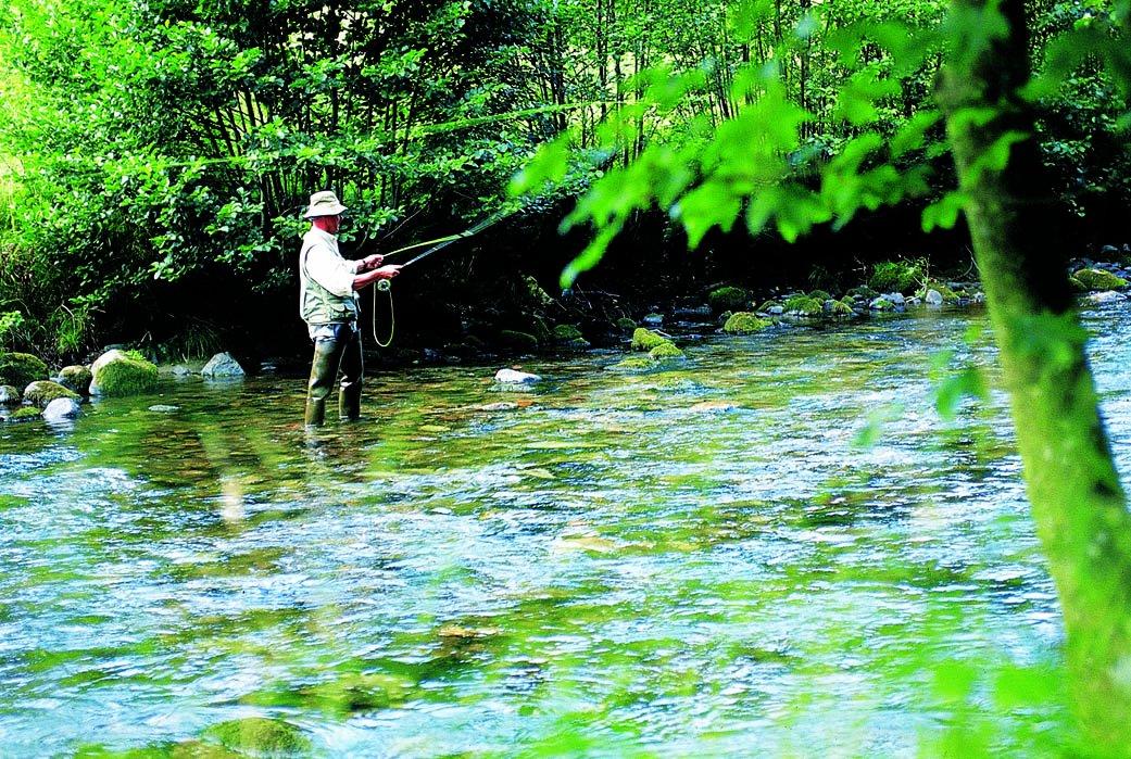 Angler beim Fliegenfischen