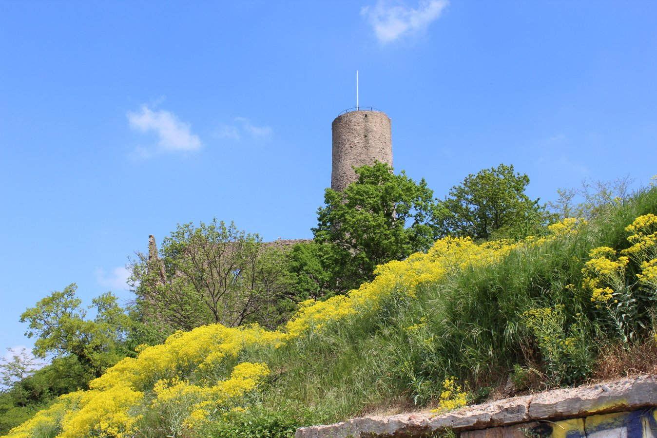 Burgensteig Strahlenburg Schriesheim