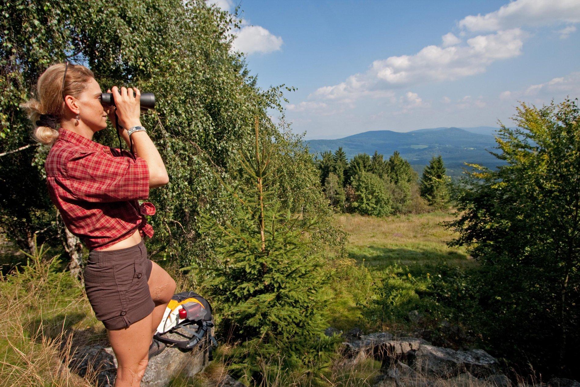 Oberpfälzer Wald Ausblick bei Stadlern
