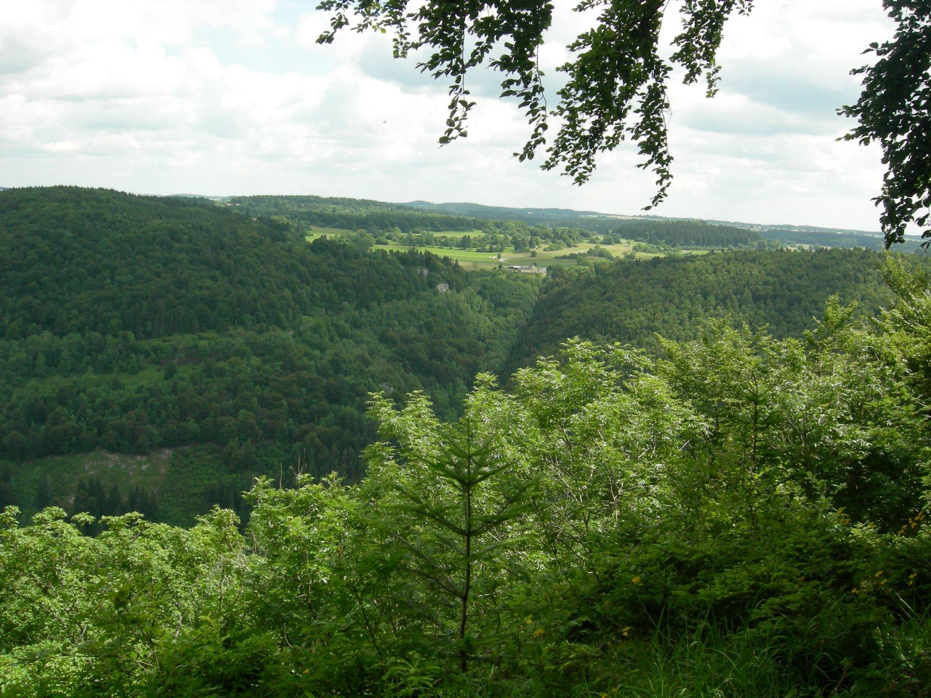 Aussicht vom Staufenberg-Weg auf bewaldete Hügel