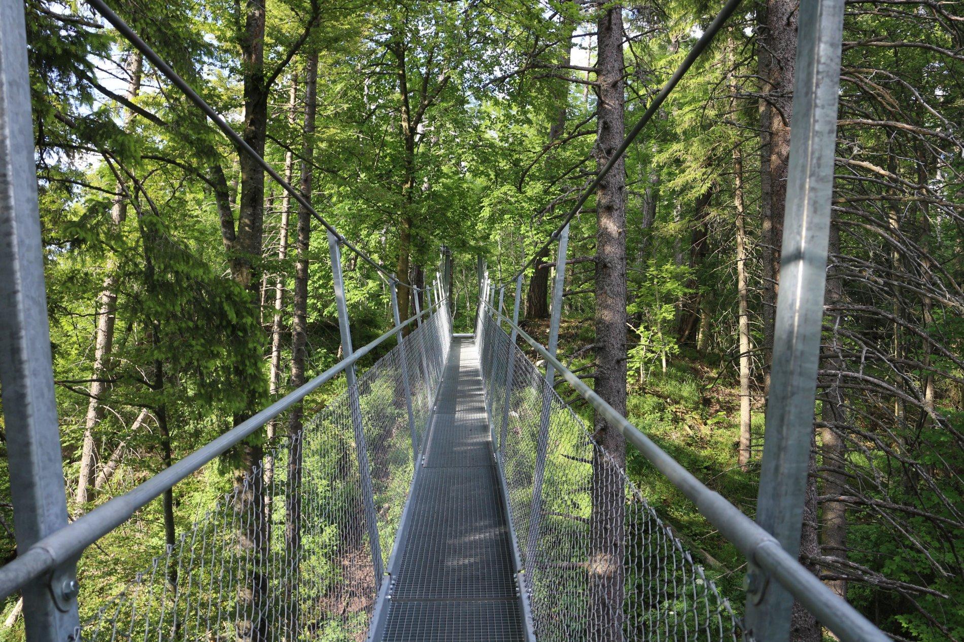 Hängebrücke aus Metall am Oberhohenberg