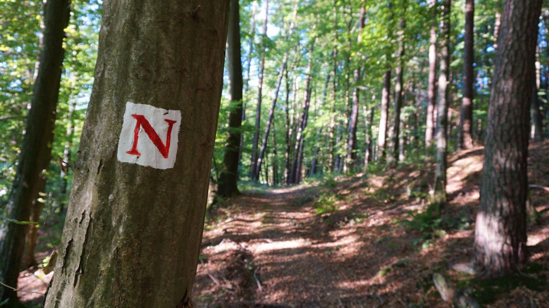 """Das rote """"N"""" auf weißem Grund markiert den Nibelungensteig"""