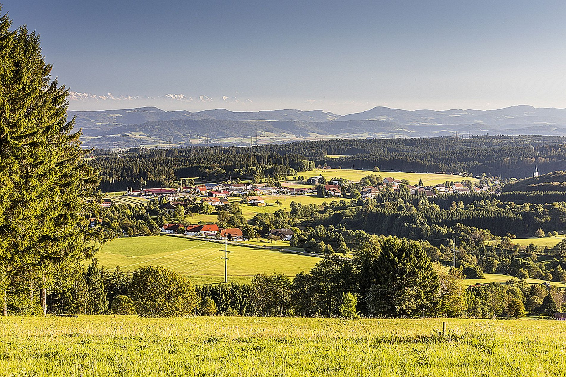 Rickenbach Alpenblick Abhau