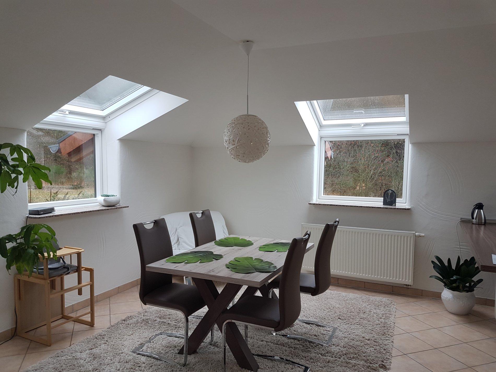Essbereich mit Tisch, vier Stühlen und Pflanzen