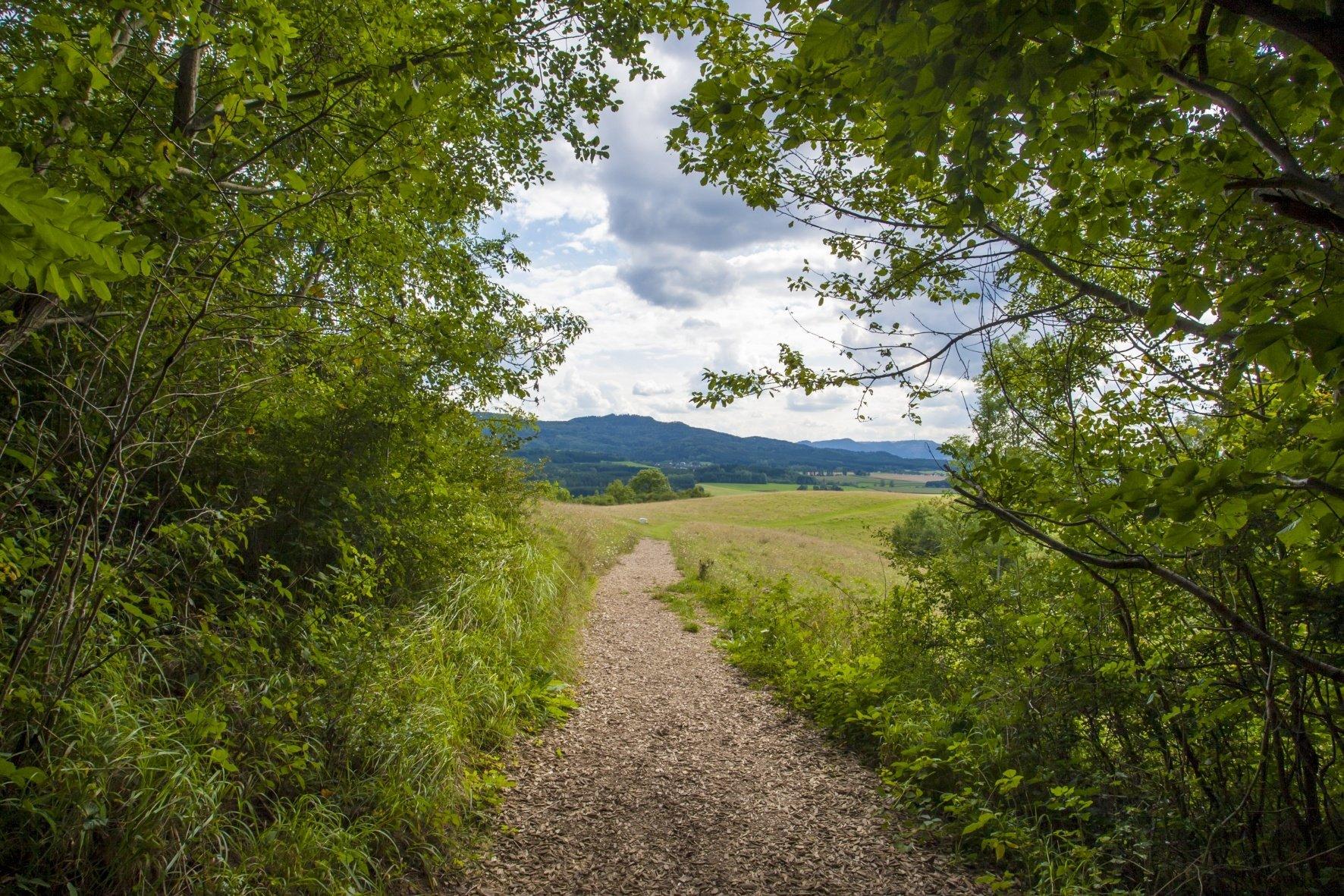Pfad mit Blick auf die Hügel der Zollernalb