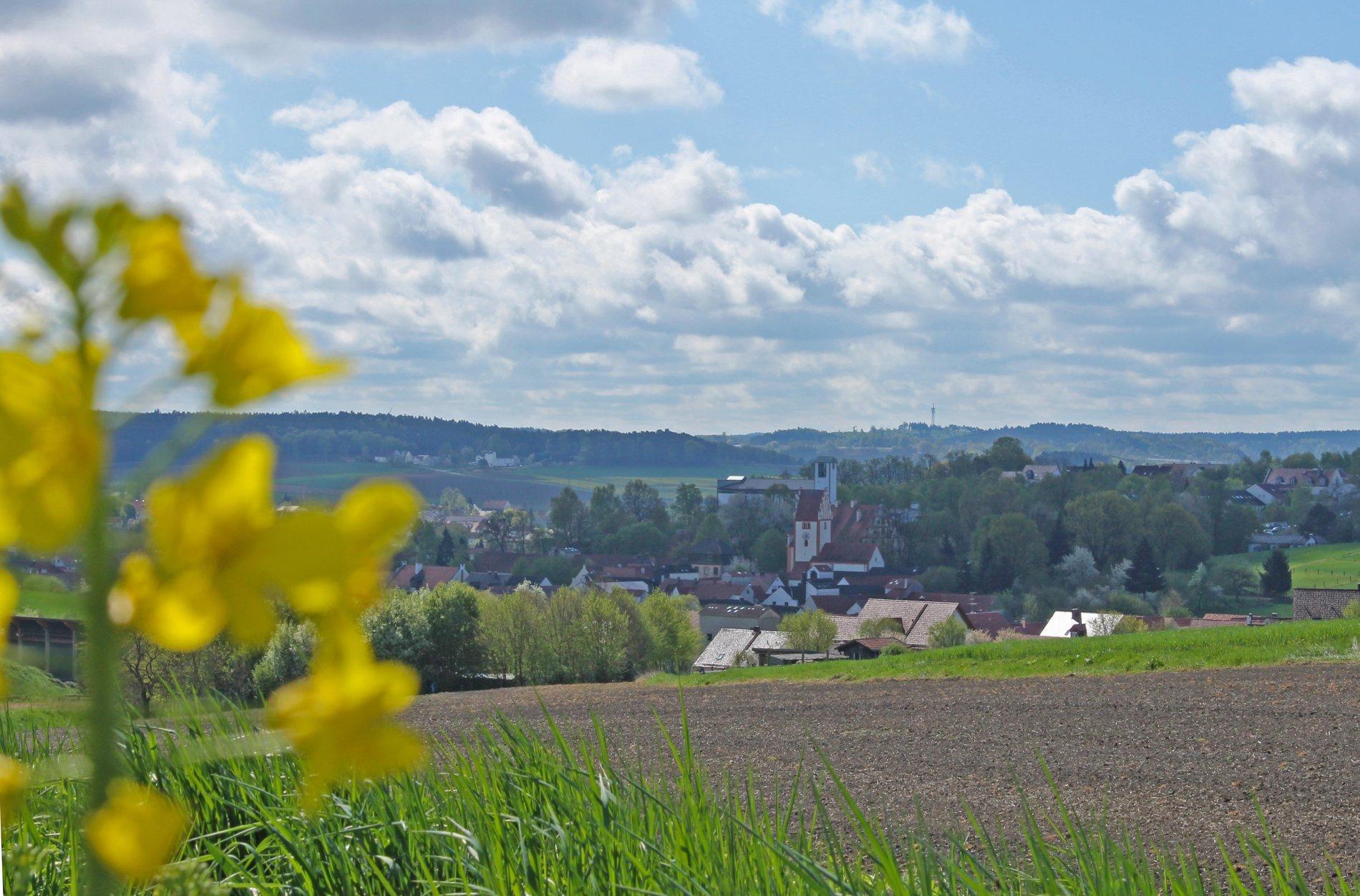 Blickauf Rohrbach in der Hallertau