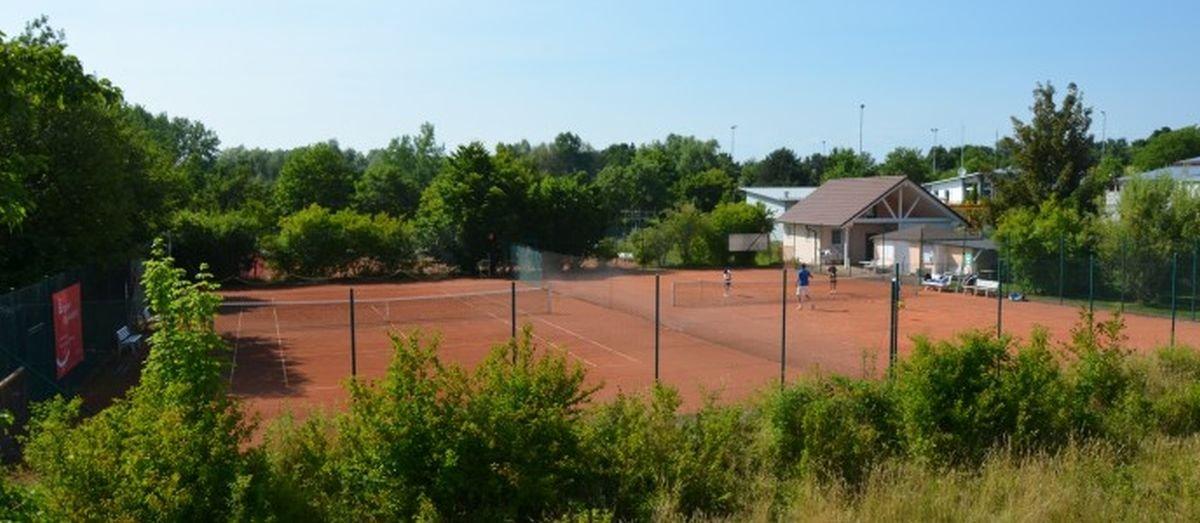 Tennisplatz in Gaienhofen-Horn