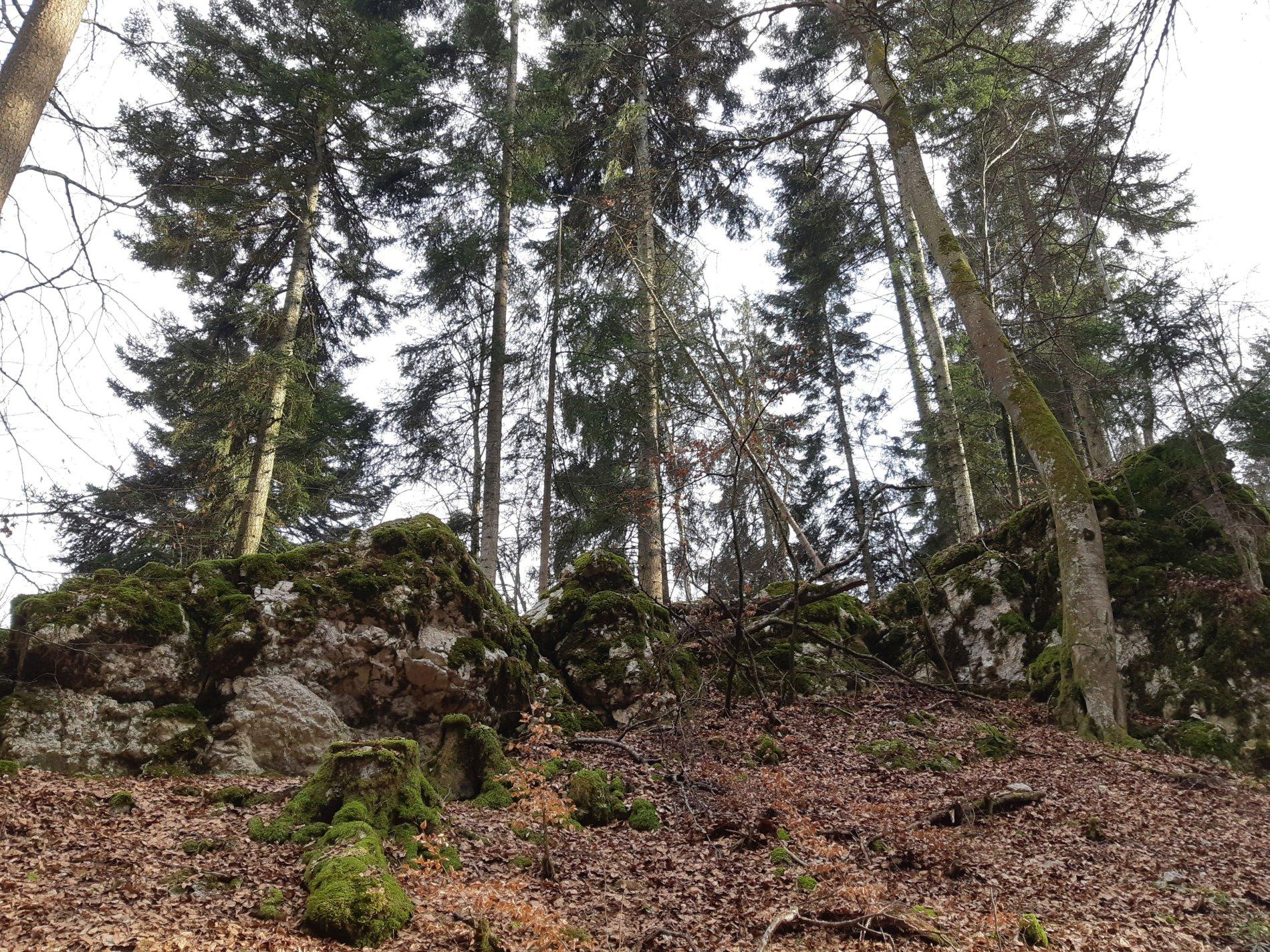 Märchenhaftes Felsenmeer