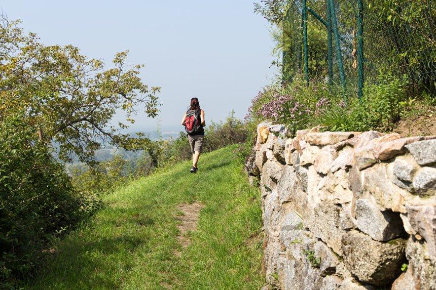 Eine Frau wandert auf einem grasbewachsend Pfad auf dem Blütenweg vorbei an einer Natursteinmauer