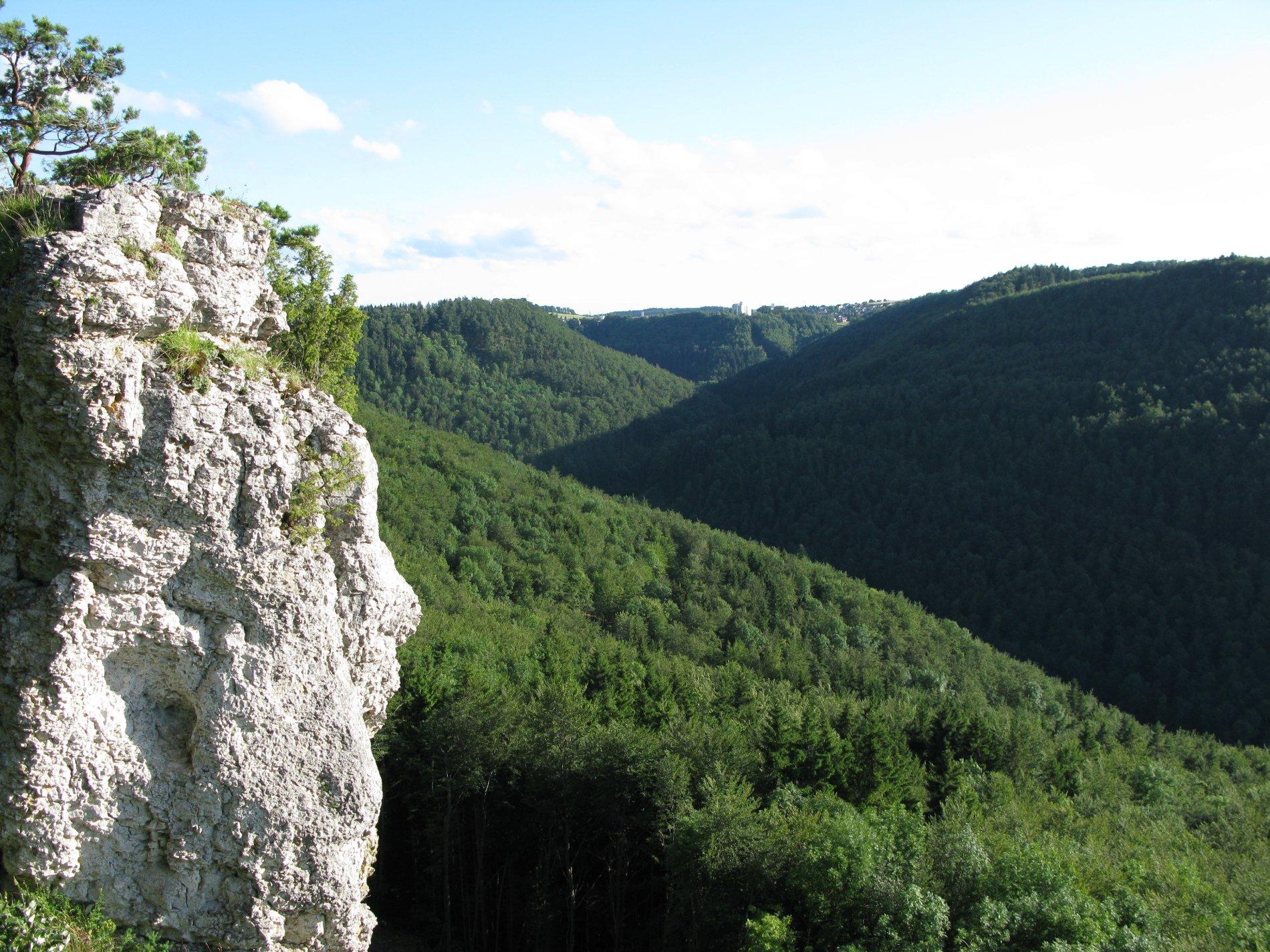 Blick vom Torfelsen über bewaldete Berge nach Meßstetten