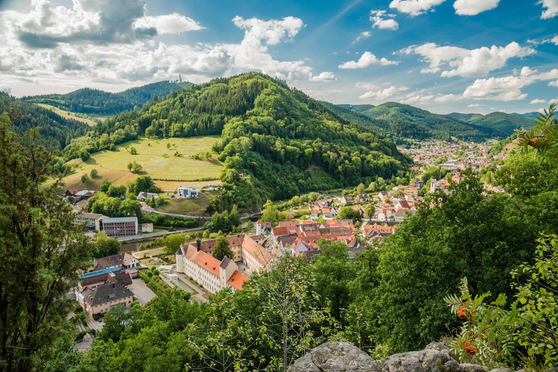 Altstadt und Schloss von Wolfach im Kinzigtal