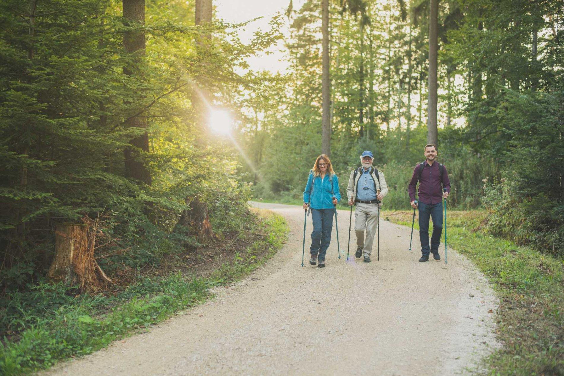 Wanderer auf dem Neun Ränkles Weg