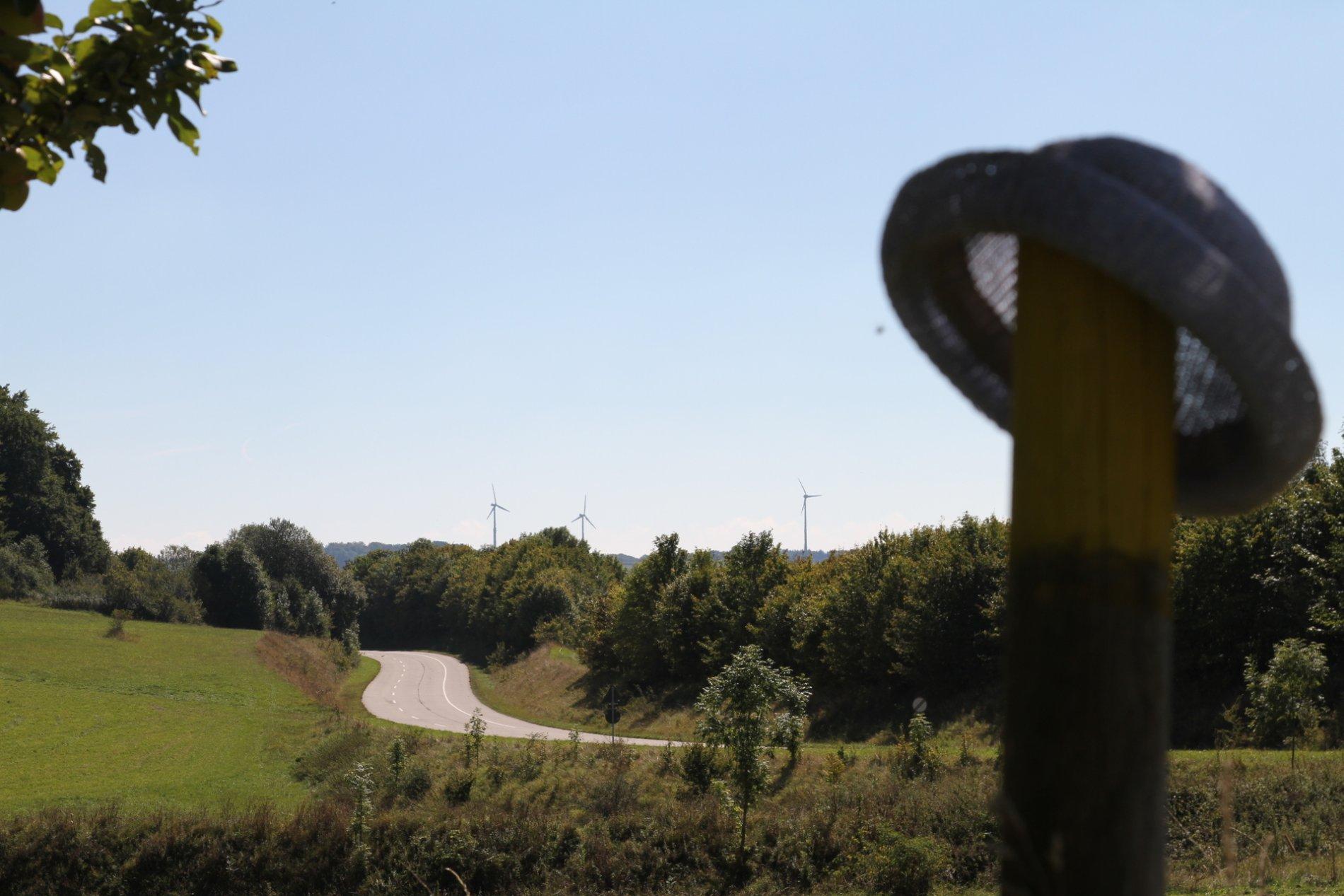 Eine Straße führt durch eine grüne Sommerlandschaft. Im HIntergrund sind drei Weindräder. Im Vordergrund ist verschwommen ein Hut, der auf einem Holzpflock hängt.