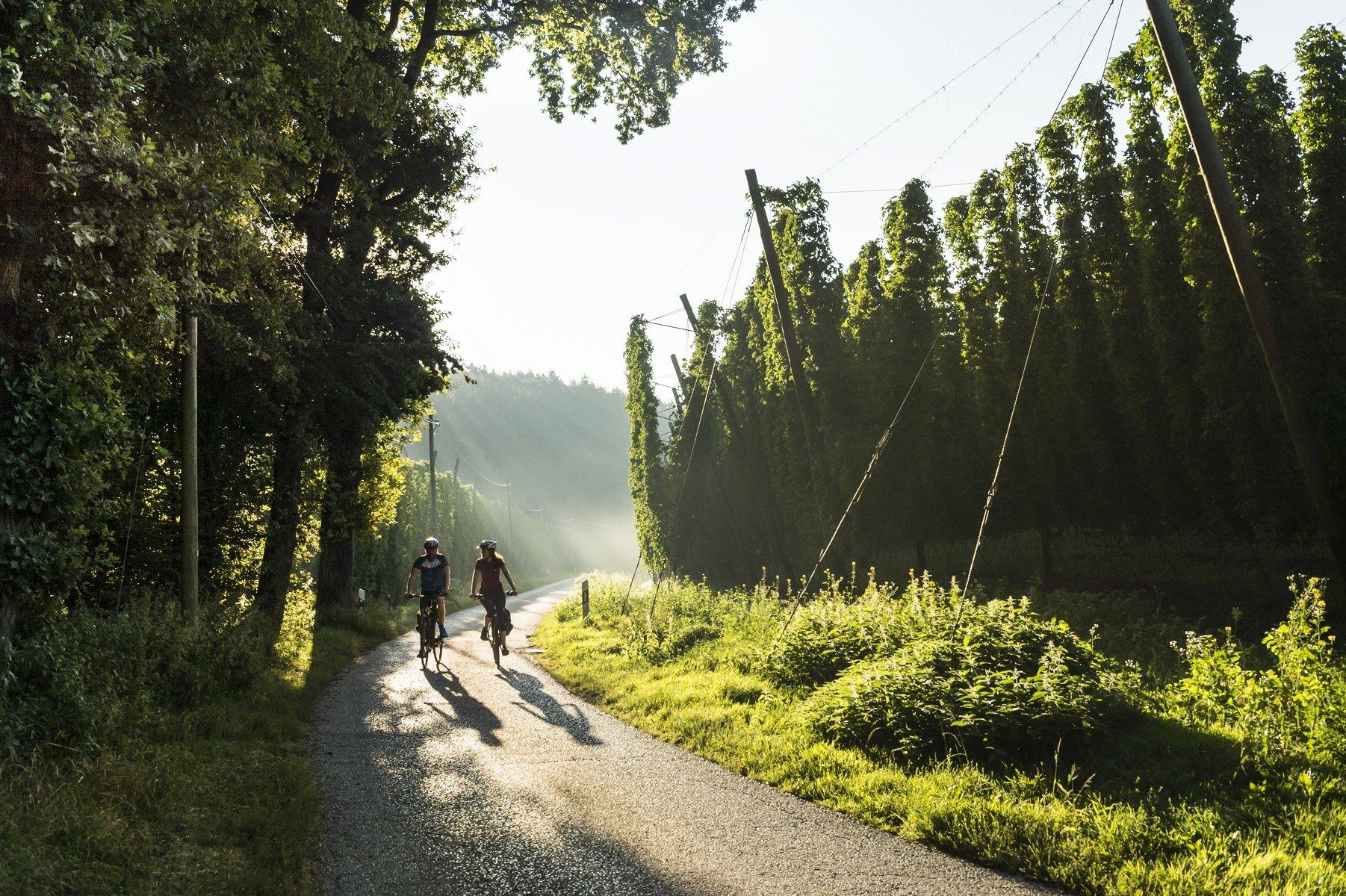 Die idyllische Landschaft der Hallertau - perfekt für Genussradler.