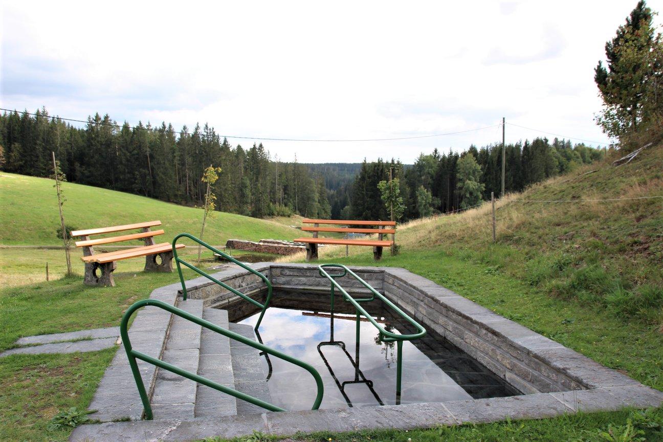 Wassertretstelle Schwärzenbach Ahorn