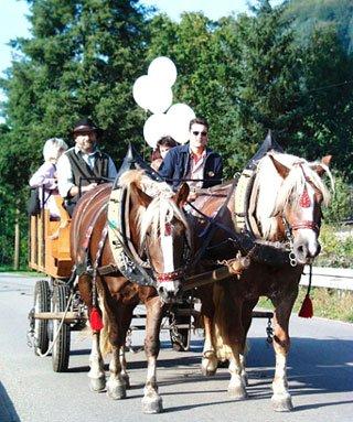 Die Familie Gihr bietet Pferdekutschebfahrt in Hausach an