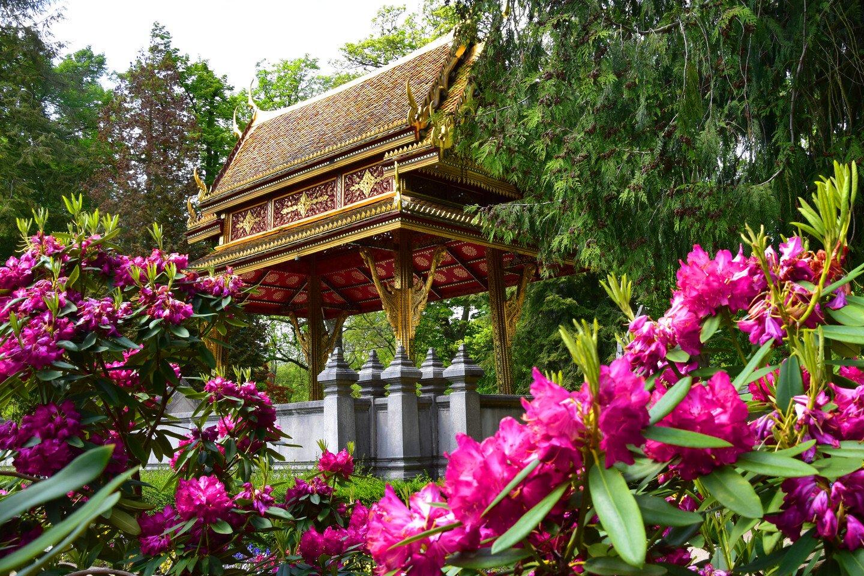 Bad Homburg v. d. Höhe - Thai Sala