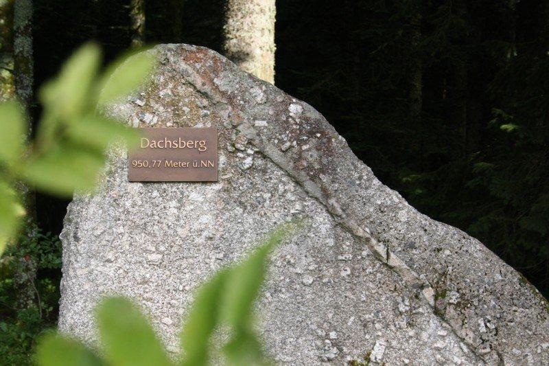 """""""Gipfelmarkierung"""" des Dachsberg."""