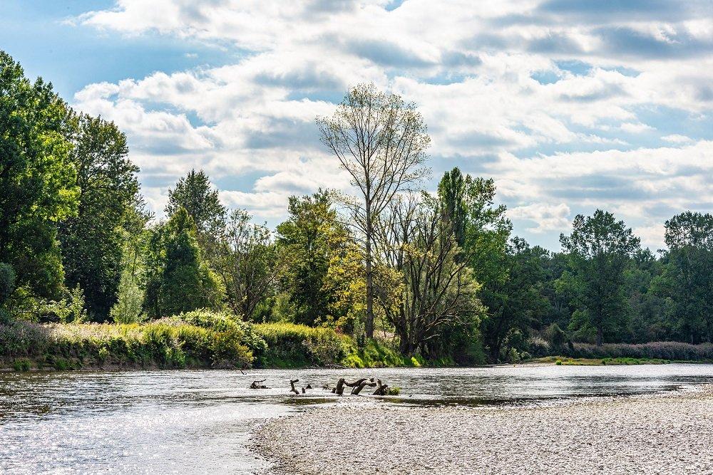 Kiesbänke im Naturschutzgebiet Isarauen