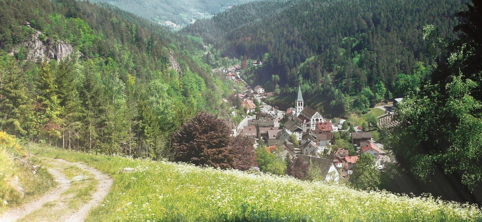 Ansicht auf Lauterbach von Steinbank, Tannenäckerle