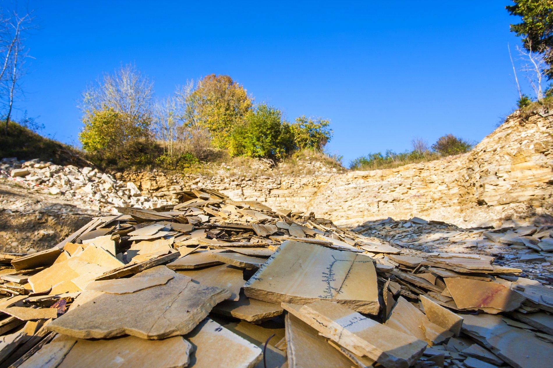 Kalkplatten in der Nusplinger Plattenkalk-Lagune