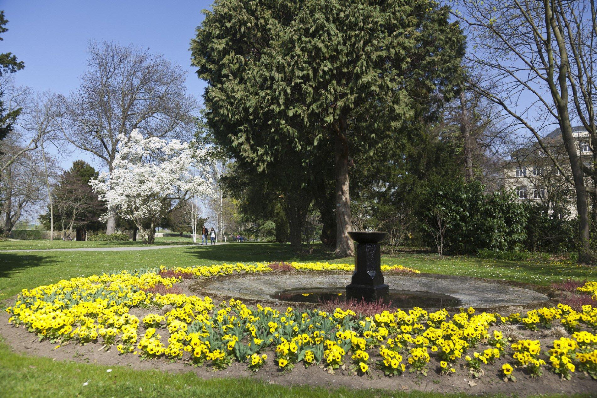 Verna Park