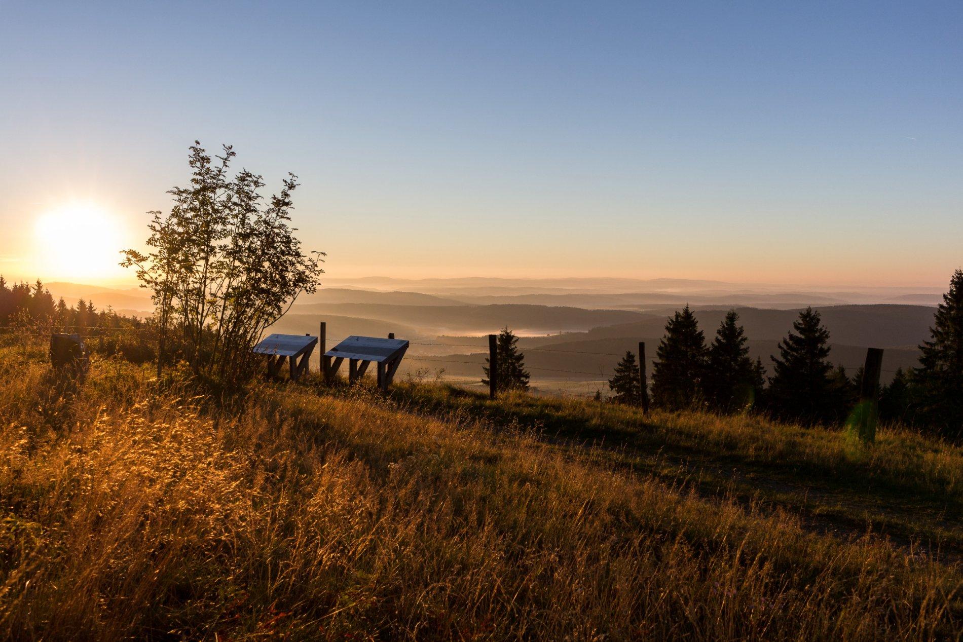 Aussichtspunkt Kalied Sauerland-Höhenflug