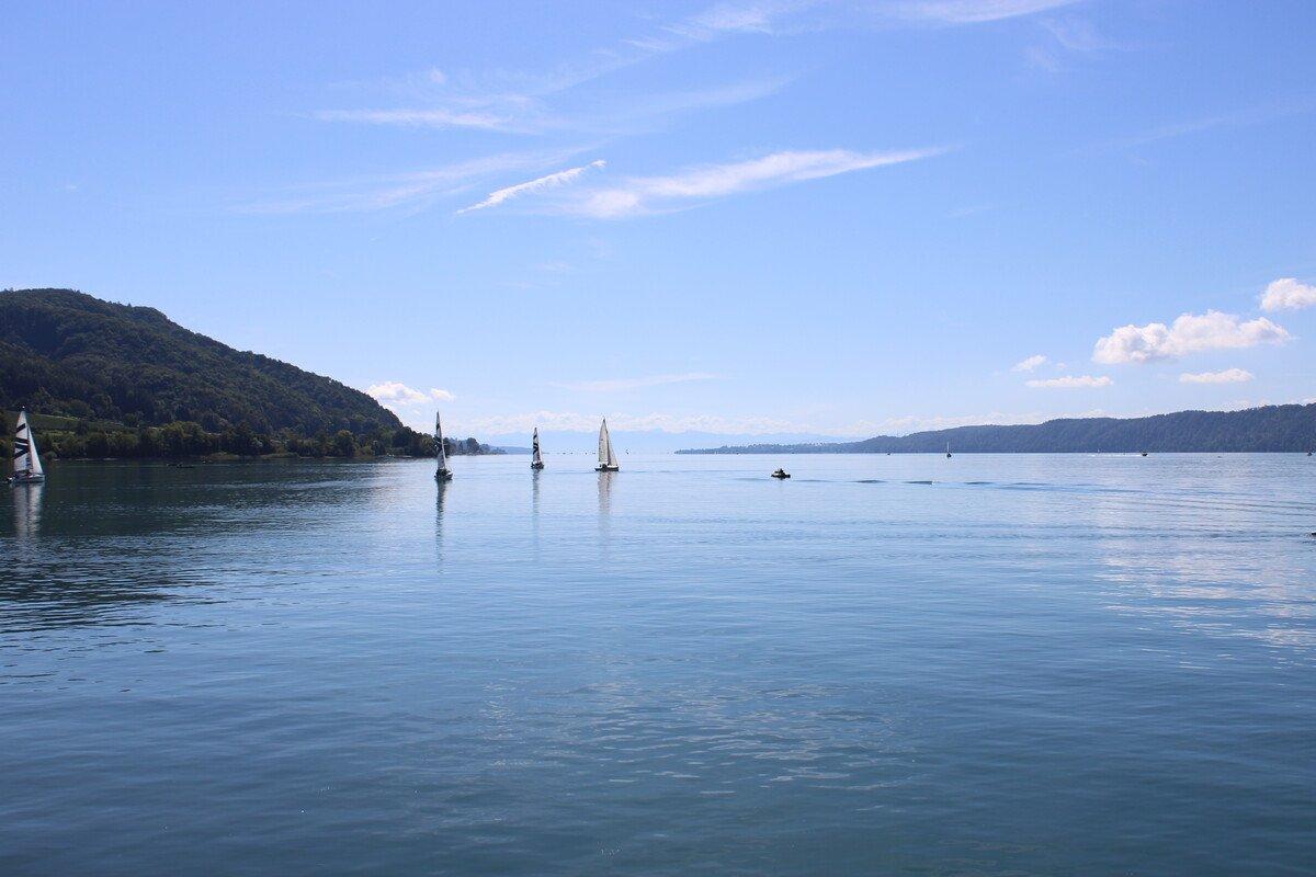 Segelboote auf dem Überlinger See
