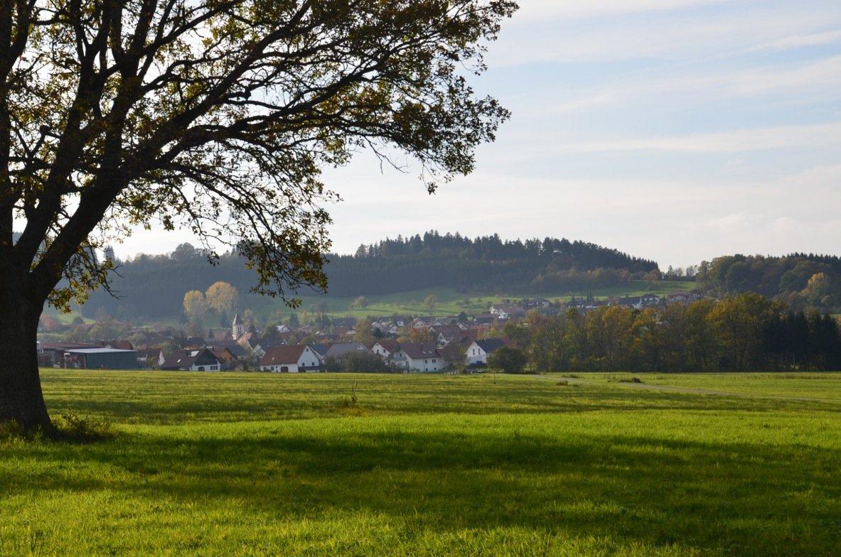 Honau-Rundweg mit Ausblick auf die Berge der Hochalb