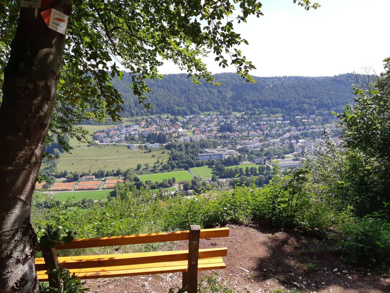 Blick vom Martinsfels auf Albstadt-Ebingen