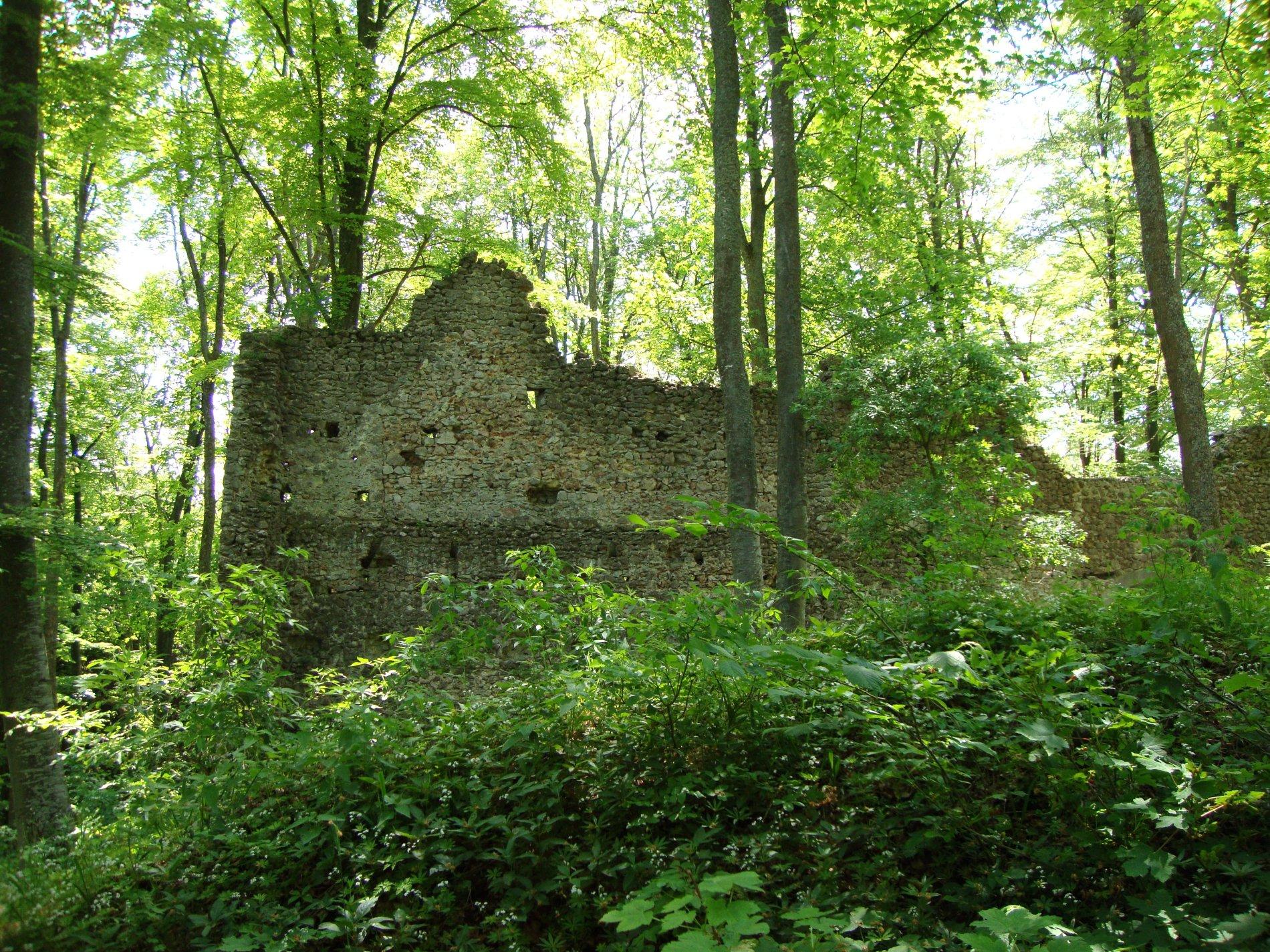 Ruine Stetten im Wald