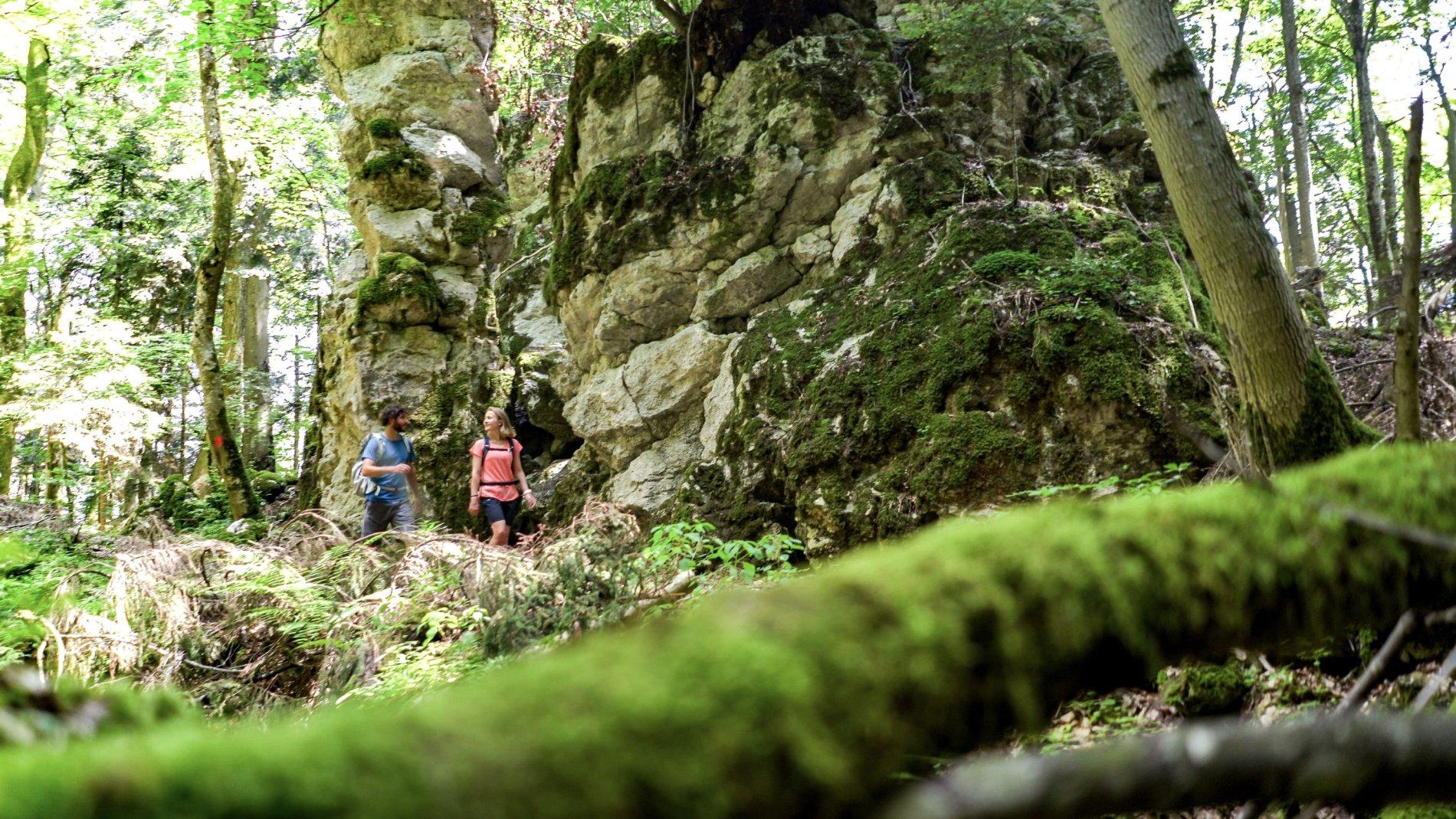 Gigantische Felsen mitten im Wald