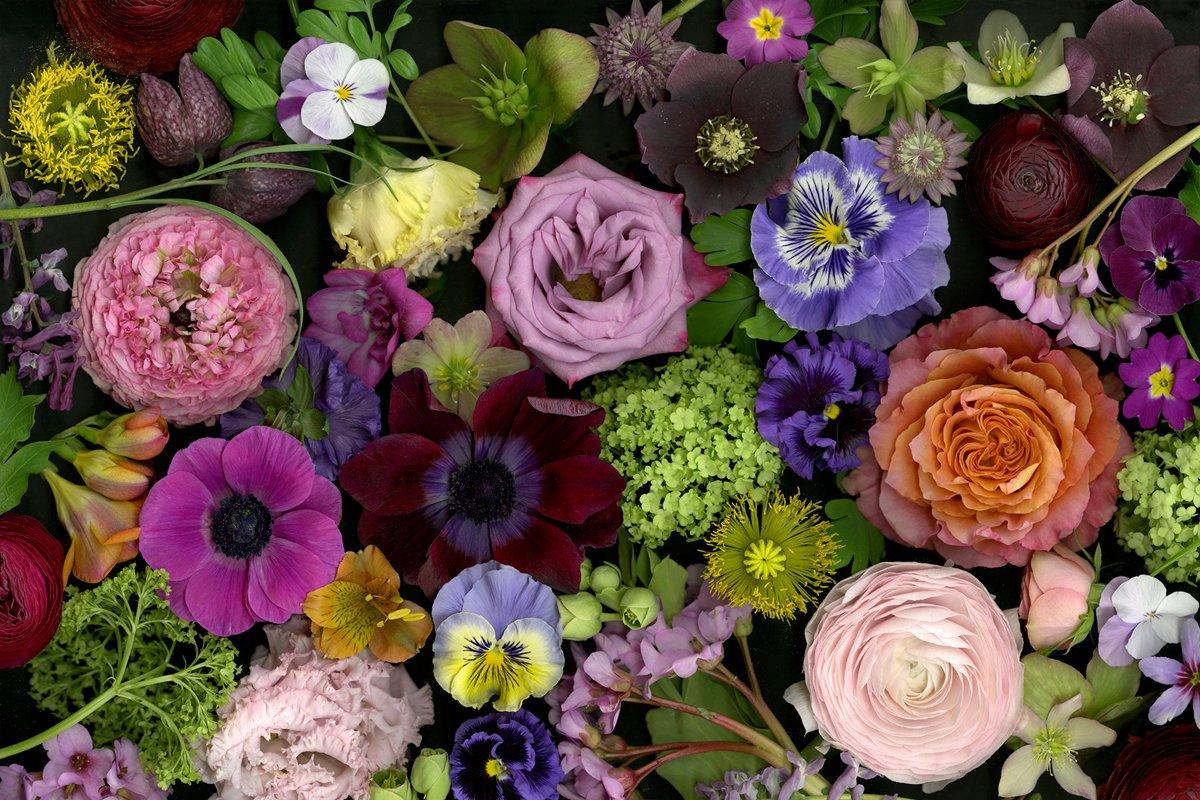 Flores Blumenbinderei Solothurn Blumen