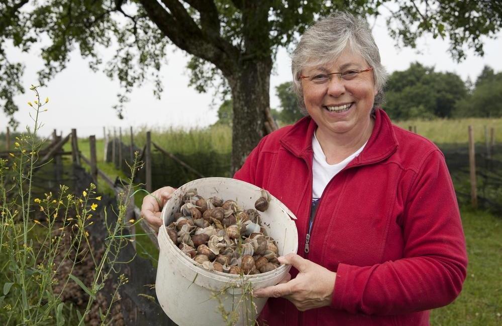 Eine Person steht im Garten und hält einen Eimer mit Weinbergschnecken