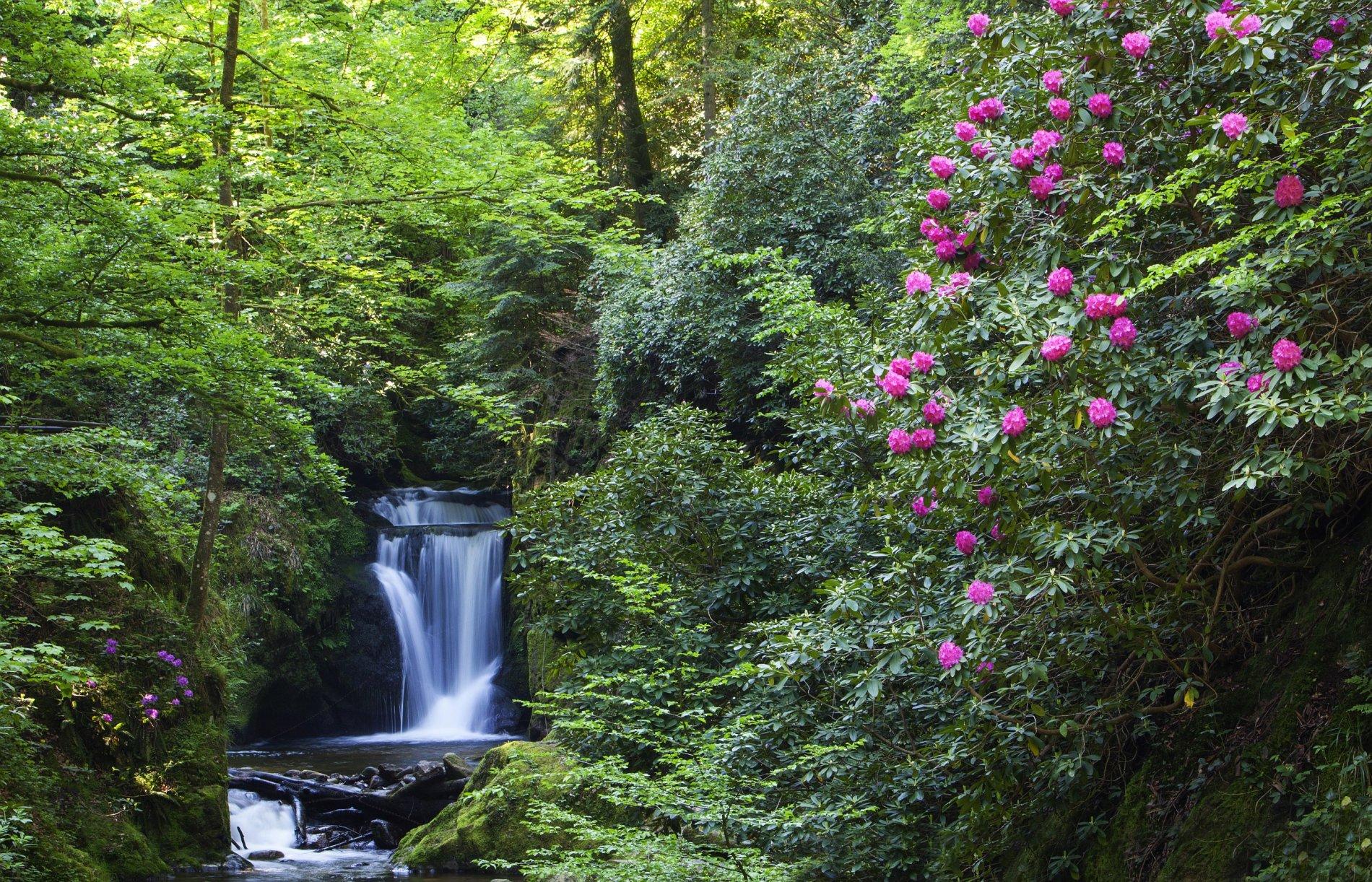 Die Geroldsauer Wasserfälle