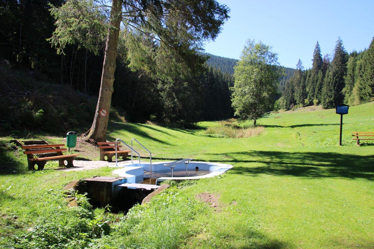 Wassertretstelle Neustadt Färbe