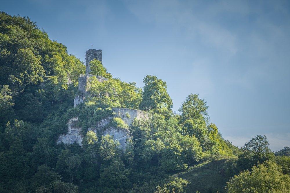 Eine Burg mit hohem Turm aus Steinmauern, die aus dem Wald herausragt. Die Sonne scheint und der Himmel ist kaum bewölkt.