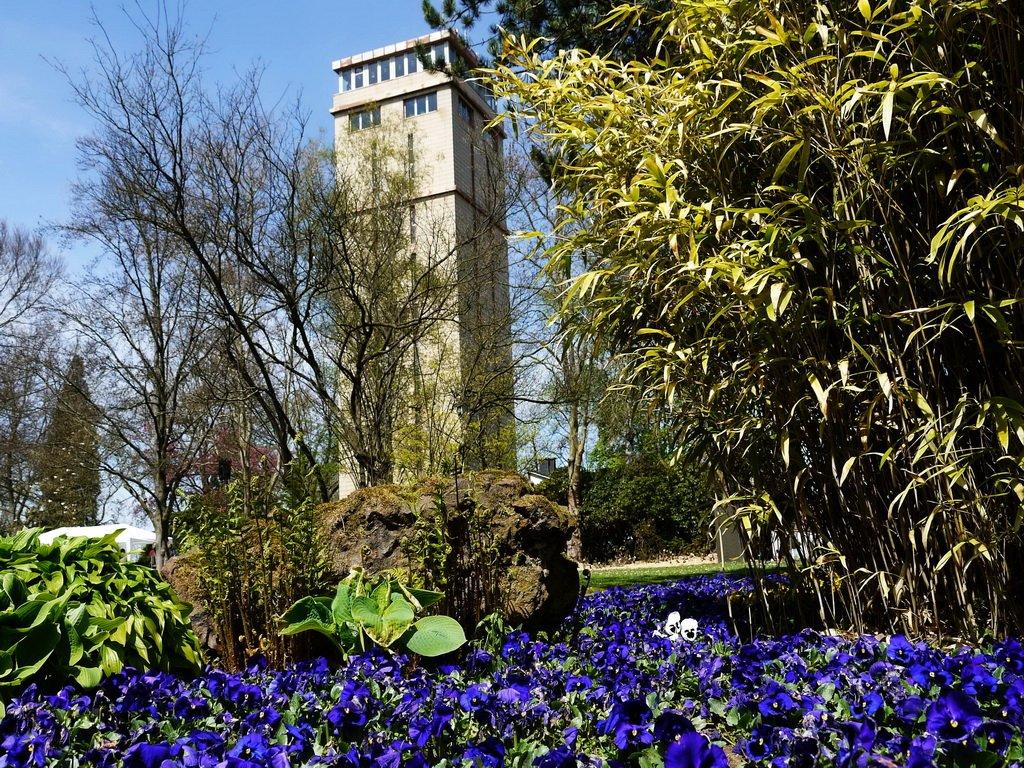 Blumengarten mit Blick auf den Hindenburgturm