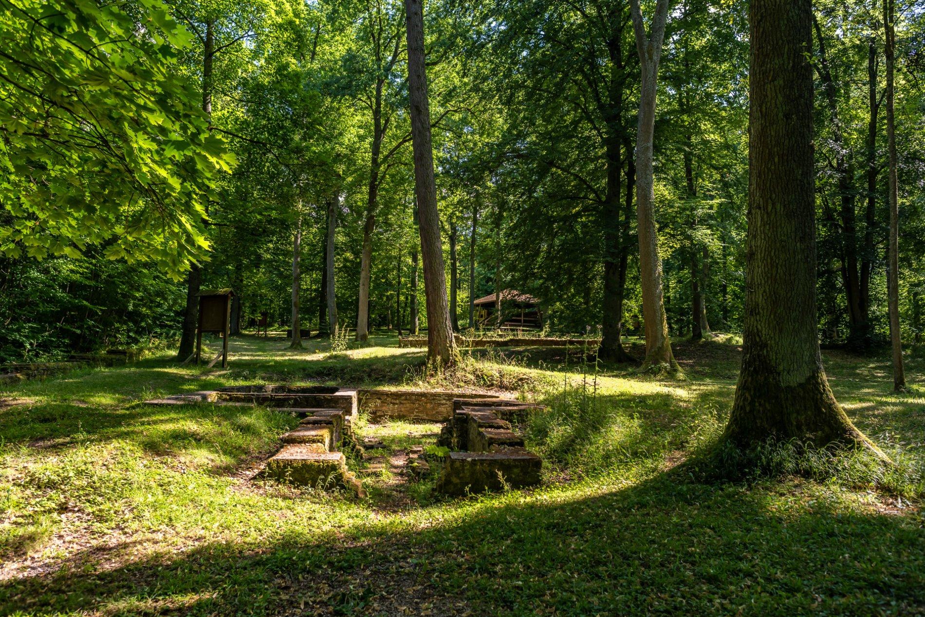 Römische Mauerreste im sonnigen Wald mit viel Wiese