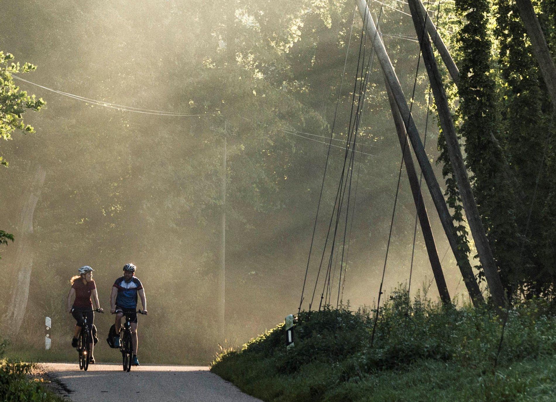 Hopfengärten säumen die Radstrecke von Ingolstadt nach Freising