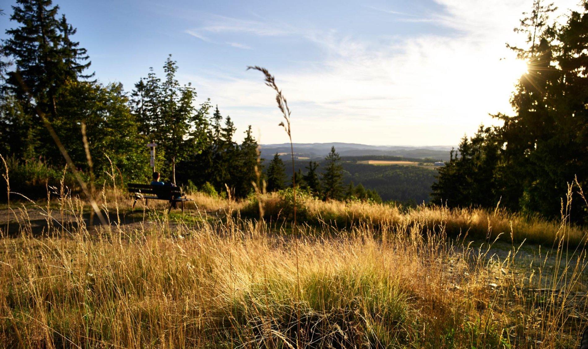 Blick vom Döbraberg