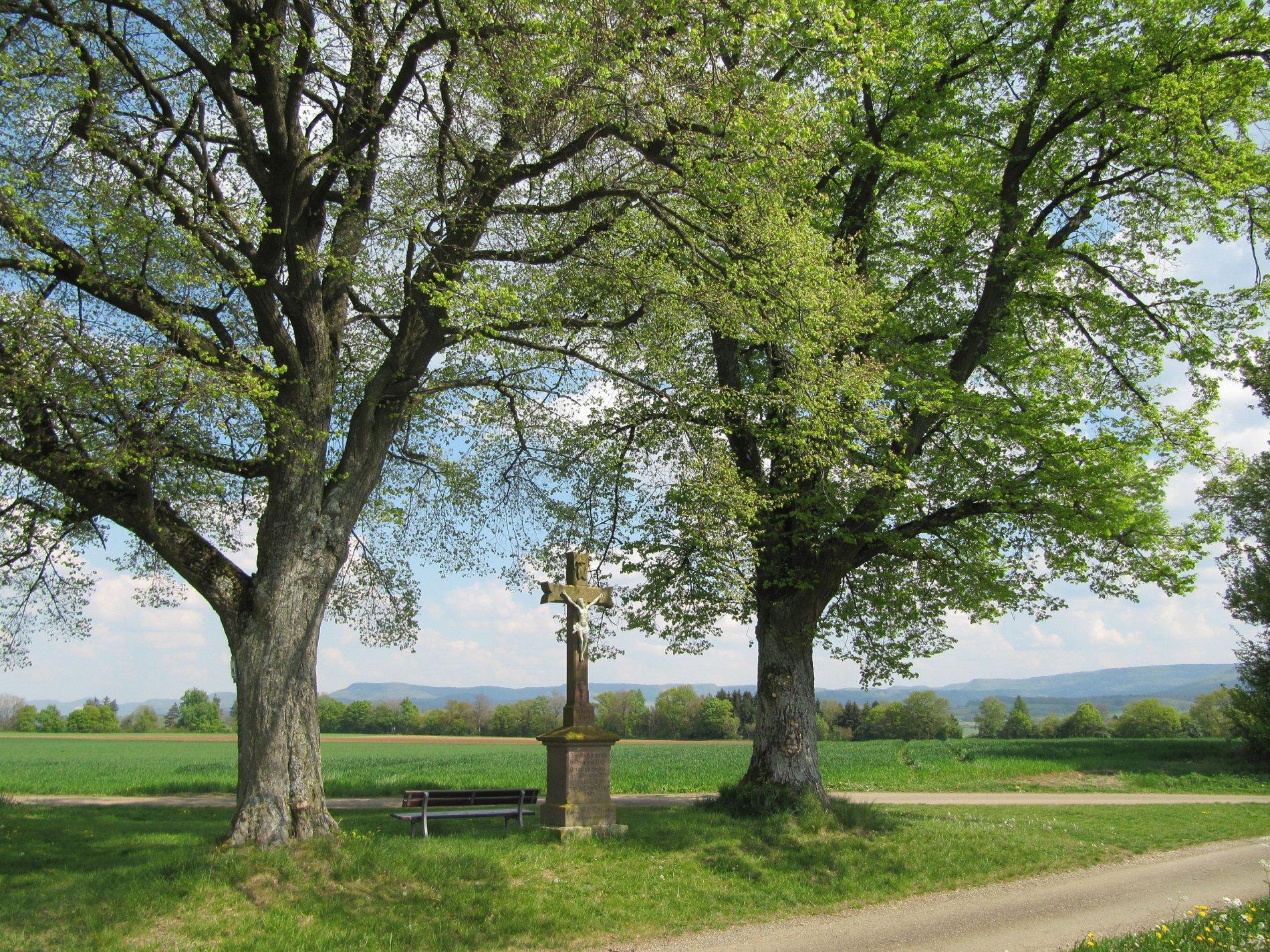 Wegkreuz unter Bäumen an einem Weg