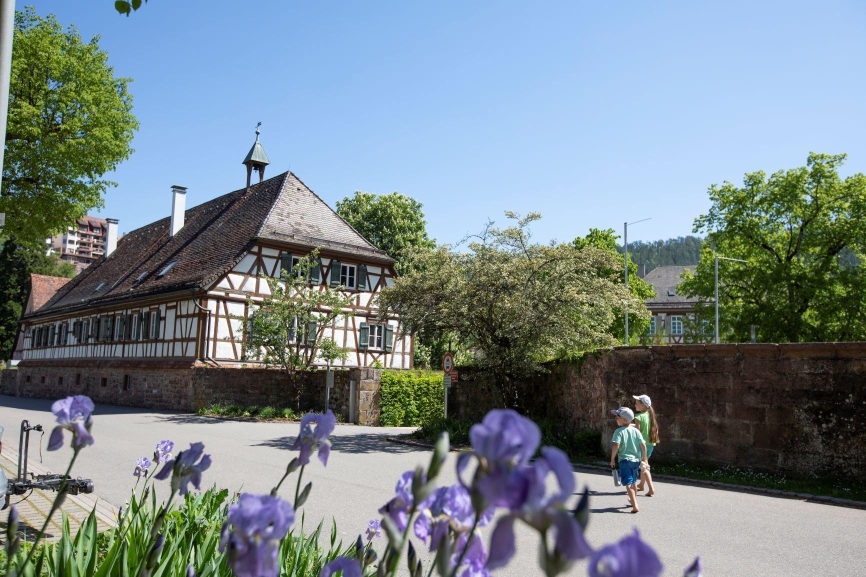 Schäferlaufstadt Wildberg von oben