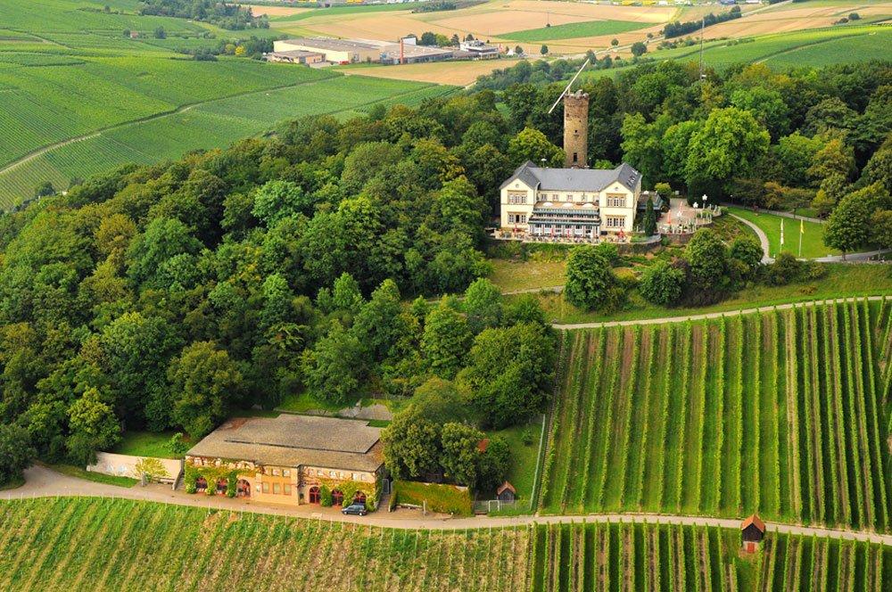 Weinberglandschaft am Heilbronner Wartberg