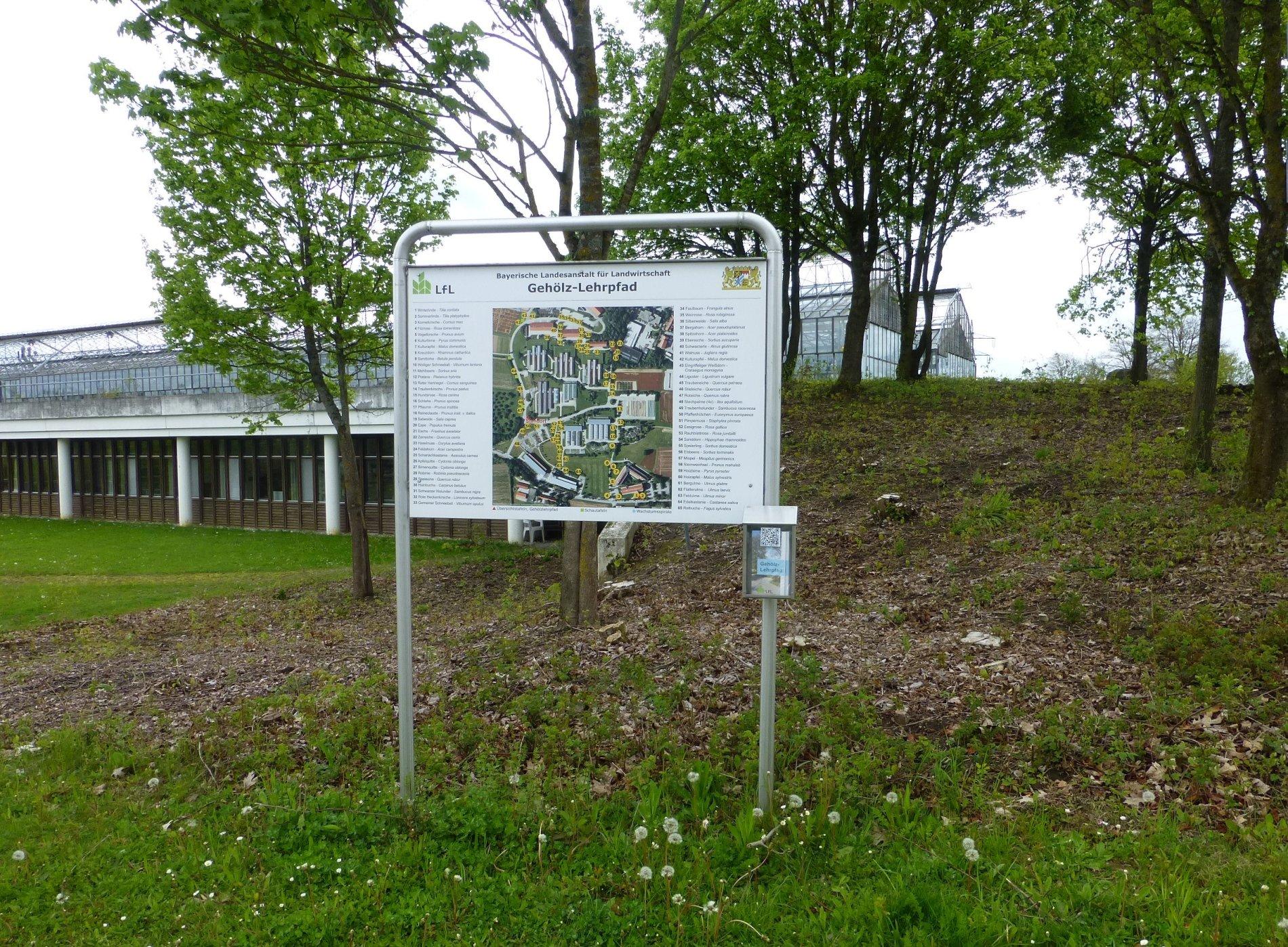 Schautafel Gehölzlehrpfad in Freising