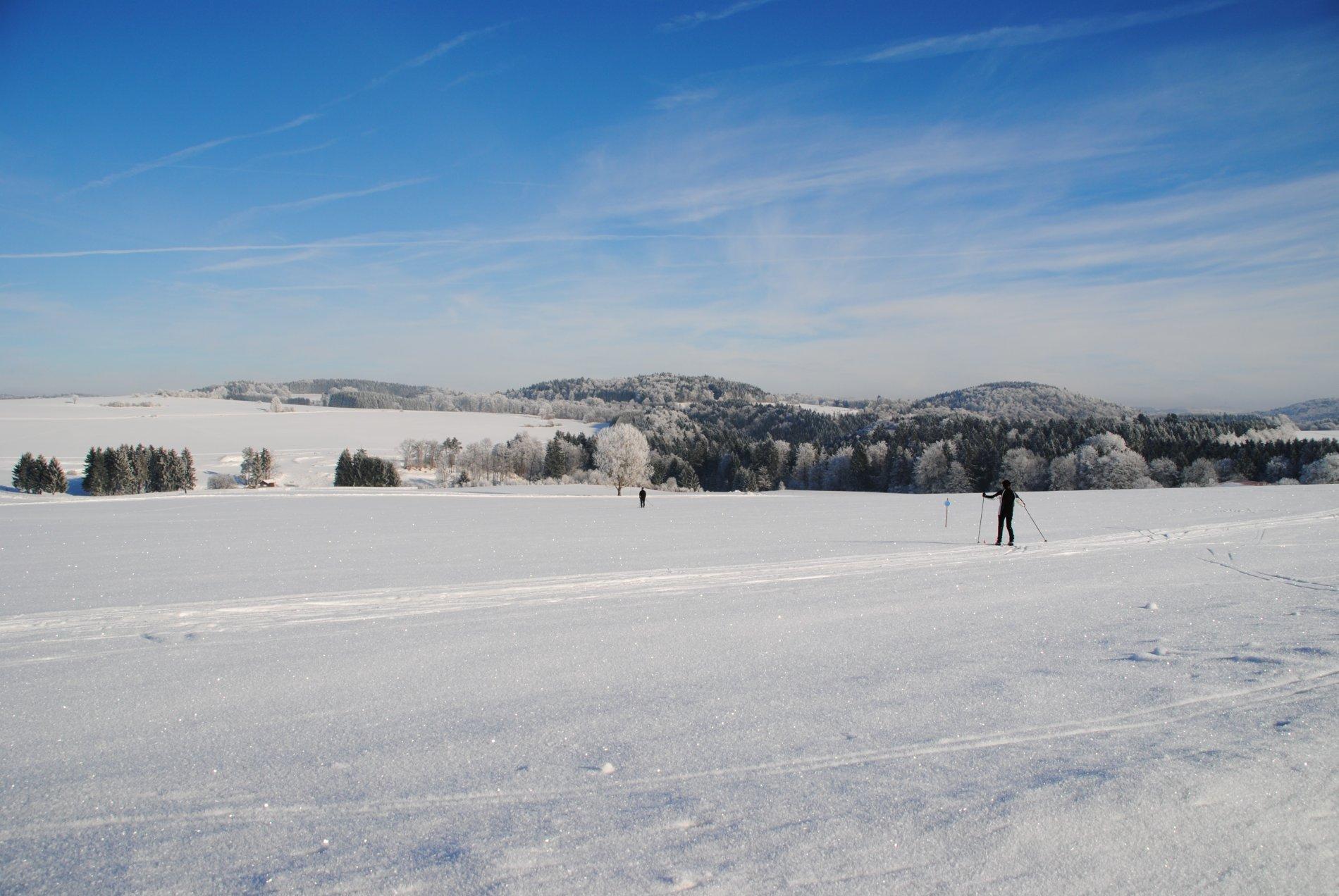 Schneebedeckte Hochalbfläche mit Loipe